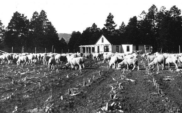 Ranch School Faculty Housing