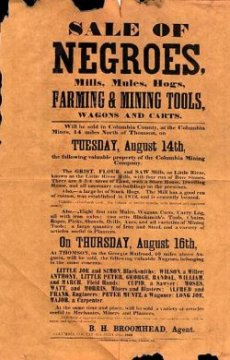 Slave auction poster