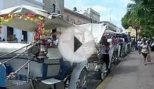 Merida Mexico Horse Carriages For Hire in the Historic